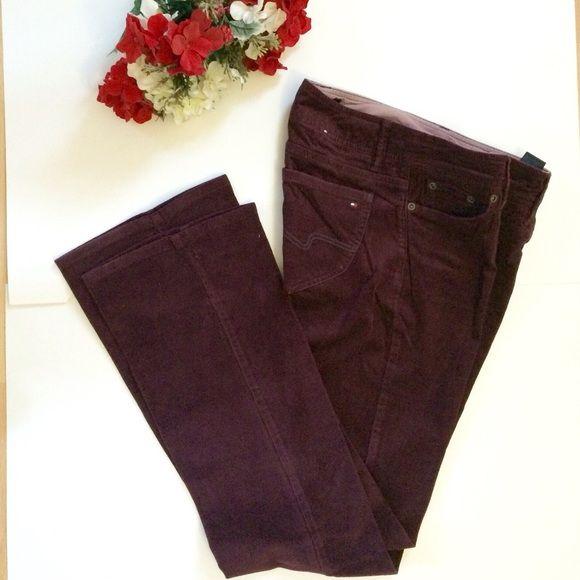 Tommy Hilfiger pants Dark burgundy Tommy Hilfiger pants. Used twice. Tommy Hilfiger Pants Boot Cut & Flare