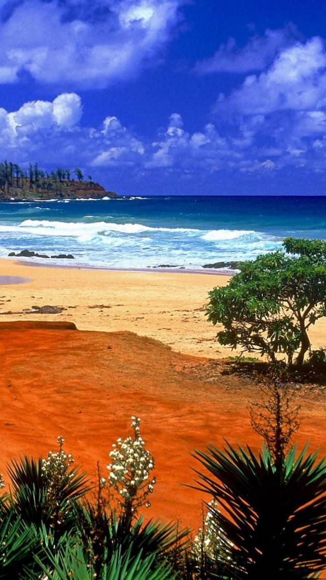 Kealia Resort, Beach, Kauai, Hawaii, Archipelago, United