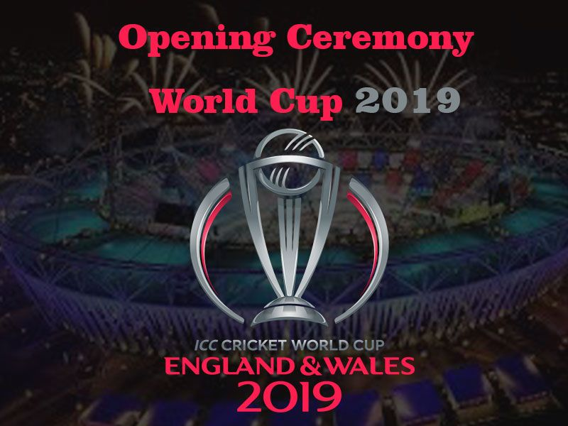 Pin On Cricket World Cup