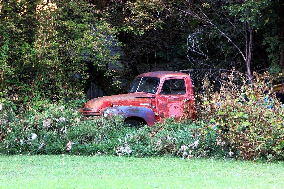 Truck in a garden. Photography by Lynne King