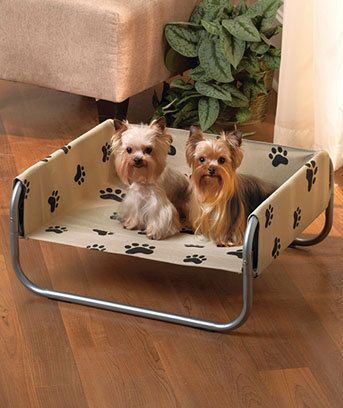 Images Hosted By Use Com Dog Cots Dog Pet Beds Dog Training Collar