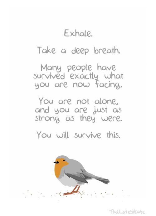 You Are Not Alone Inspirational Quotes Quotes Positivity Words