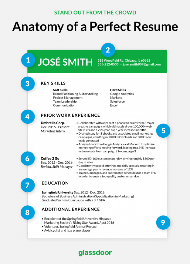 The Anatomy Of Perfect Resume  Glassdoor  Creative Resumes