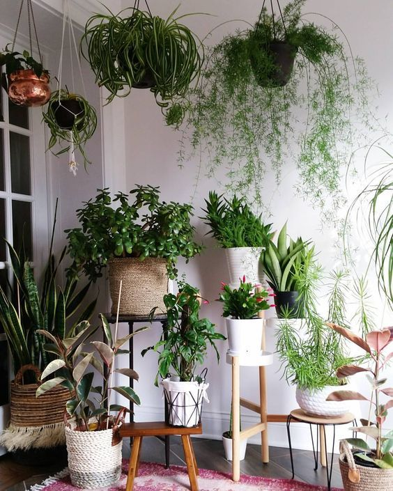 46 Wonderful DIY Indoor Garden Ideas To Freshen Your Home