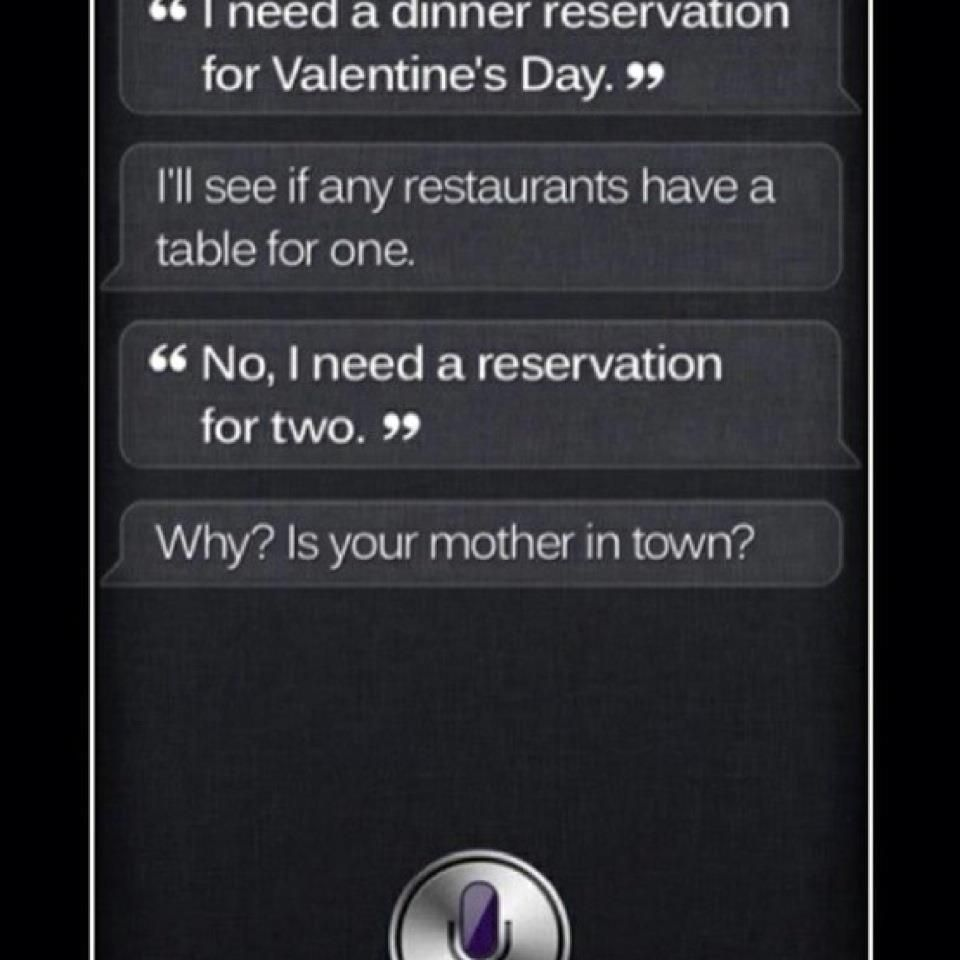 Reddit The Front Page Of The Internet Funny Siri Questions Imgur Funny Funny Jokes