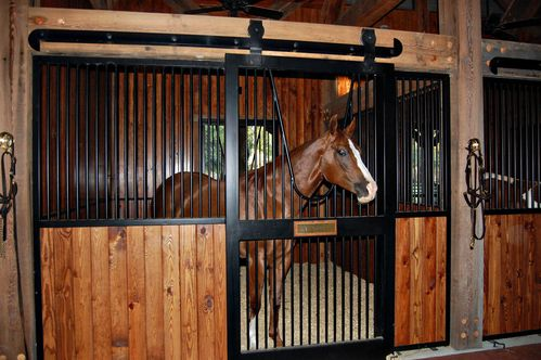 horse - Horse Stall Design Ideas