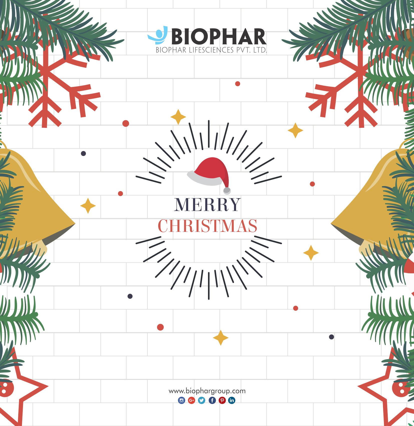 We wish you a Merry Christmas And a Happy New Year. #BiopharGroup ...