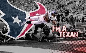 Houston Texans Baby!  -