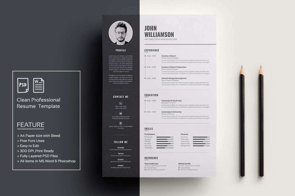 Photoshop Resume Template 20 Mba Resume Template Word Indesign And Psd Template  Places