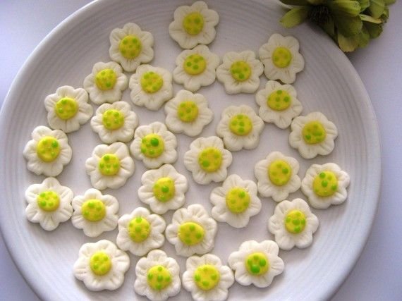 DAISY MINTS Special Occasions Weddings Parties | Daisy\'s first ...