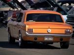Mustang, Baby