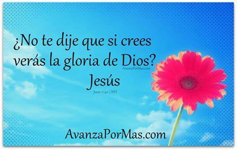 No te dije que si crees veras la gloria de Dios? Att Jesús