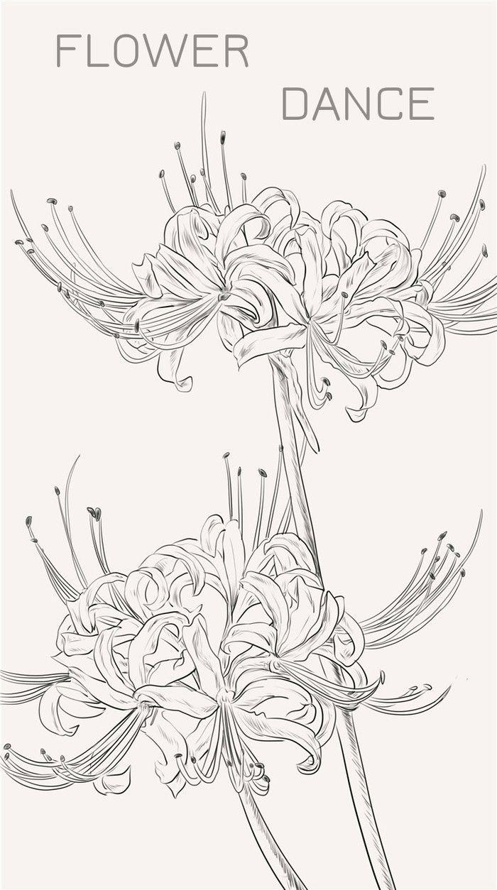 曼珠沙华 又称彼岸花 一般认为是生长在三途河边的接引之花 花香传说有魔力 能唤起死者生前的记忆 花のスケッチ 彼岸花 イラスト 背景 イラスト描き方アイデア