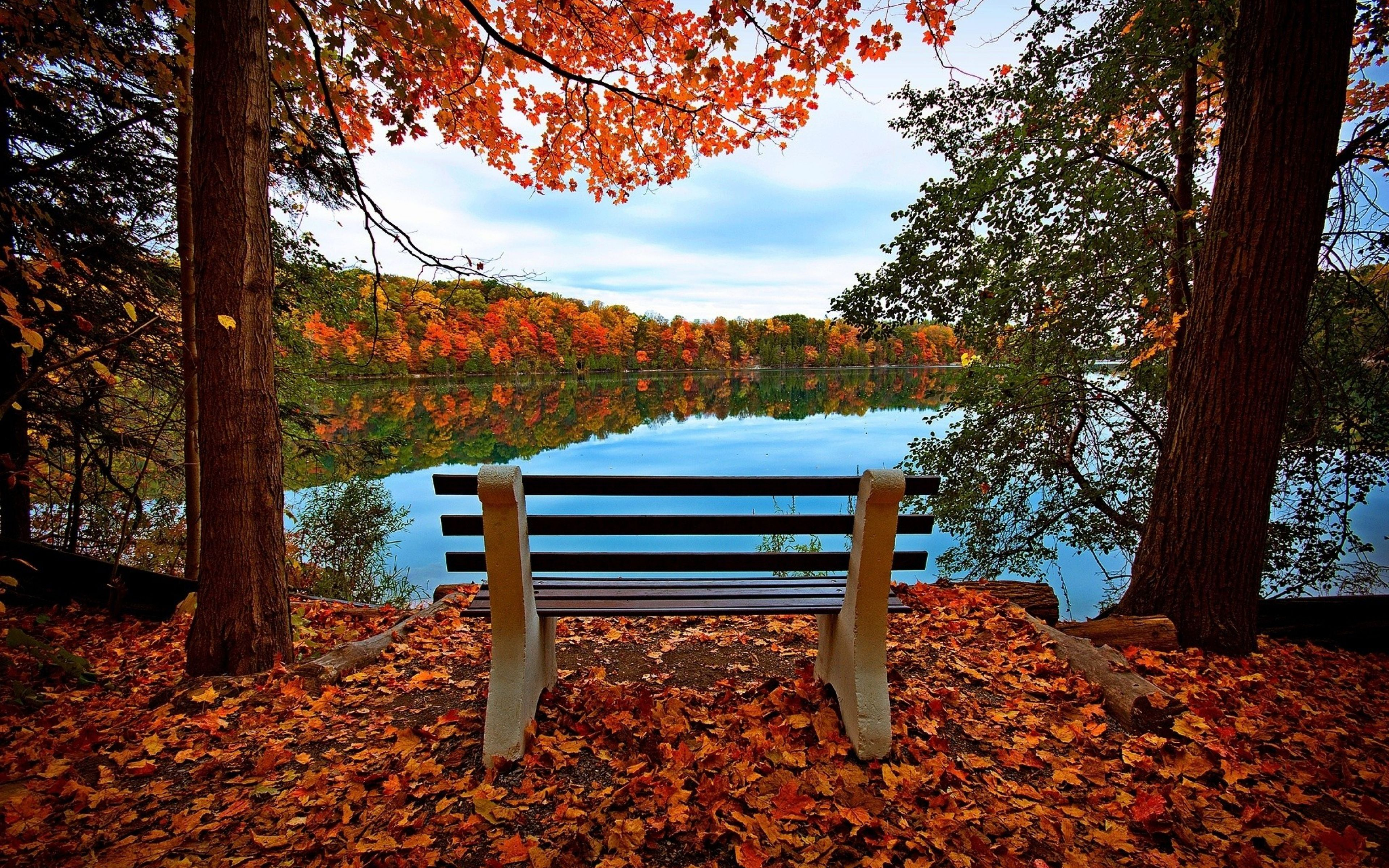 3840x2400 Wallpaper Bench Autumn River Lake Trees Schone Landschaften Herbst Spruch Fotocollage