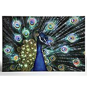 Bengal Peacock Lighted Canvas Art