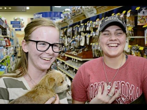 Petsmart Charities Presents Making A Difference Together National Ado Petsmart Adoption Charity