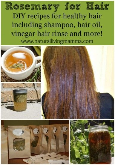 Rosemary for Hair - DIY Hair Oil, Shampoo, and Rinse with ...