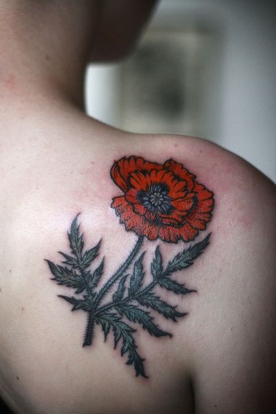 poppy tattoo by alice carrier at anatomy tattoo in portland, oregon ...