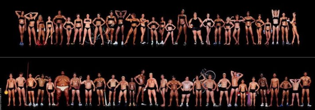 Olympians Anatomy In Motion Cinestesis Pinterest Body Images