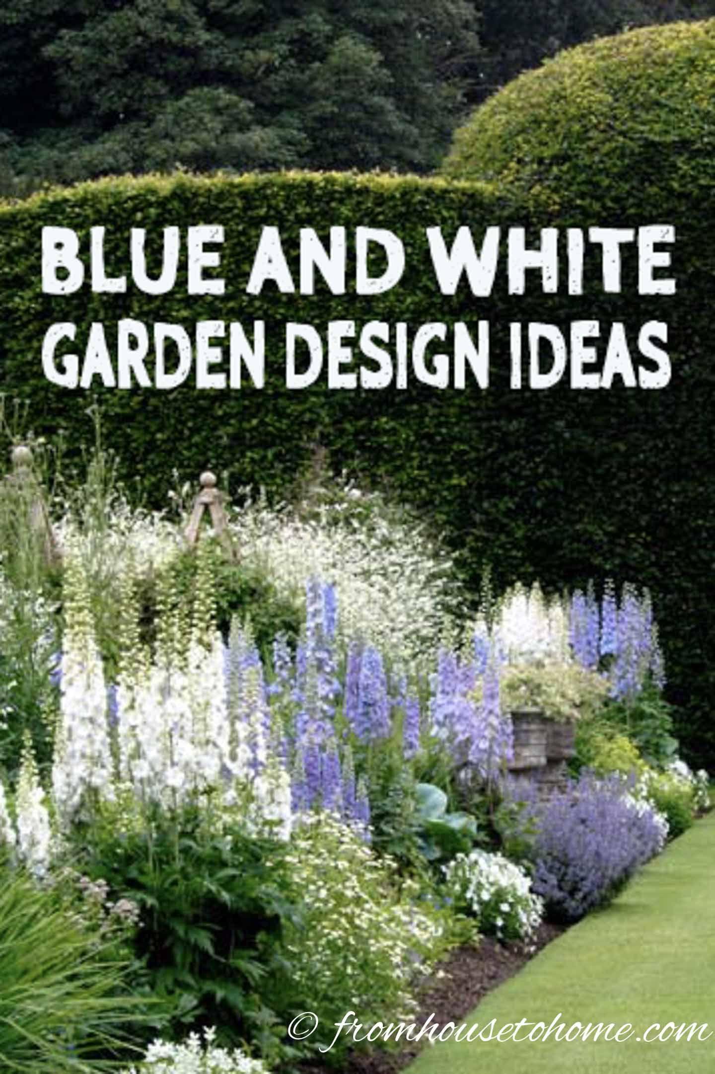 Blue & White Garden Design Ideas