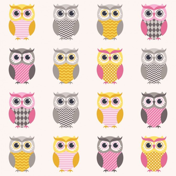 Sweetie Owls Wallpaper Mural Wall Mural Wall Murals and