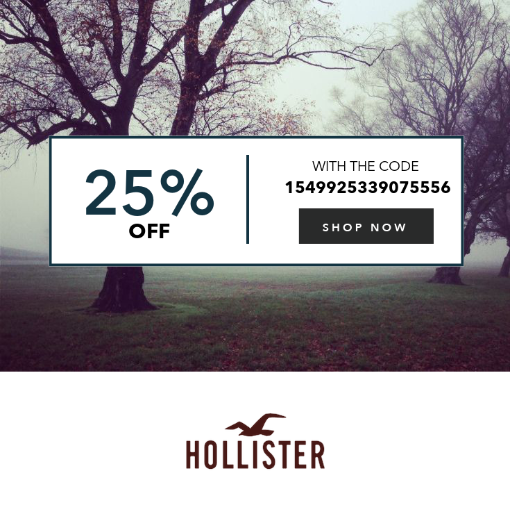 Get 25 Off 75 Expires After 1 Use Bradford Exchange Checks Hollister Co How To Apply
