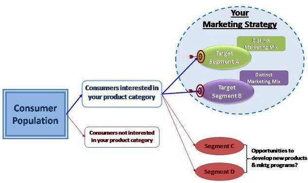 Do market segmentation business plan