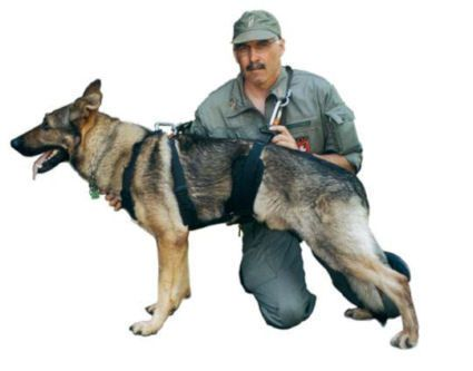 Tactical Insertion Harness For Police K9 And Search And Rescue