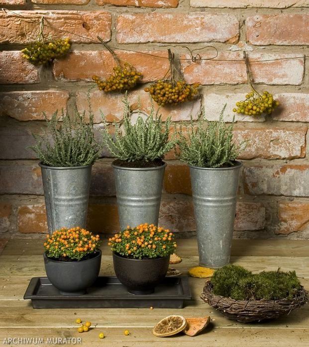 Jesienna Aranzacja Balkonu Wrzos I Chocholy Planter Pots Table Decorations Plants