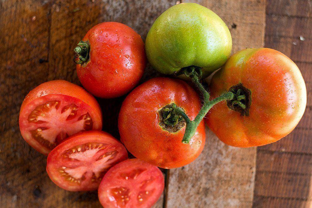 Celebrity Tomato F1 Hybrid 78 Days Lawn Care Tips 400 x 300