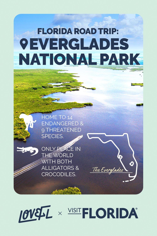 Florida Road Trip Everglades National Park Everglades National Park Road Trip Road Trip Planning