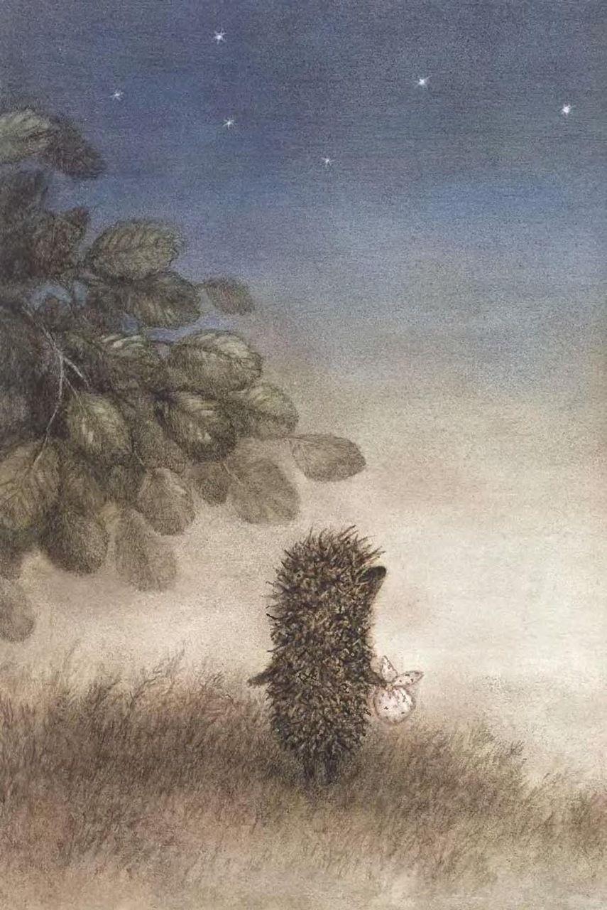 Сказка в картинках ежик в тумане, картинки холодный