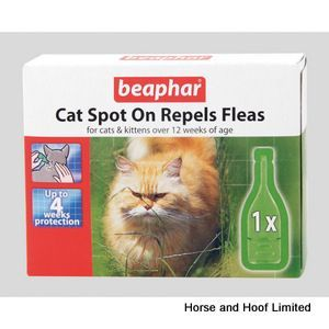 Beaphar Cat Spot On X 6 Cats And Kittens Cat Diseases Flea And Tick