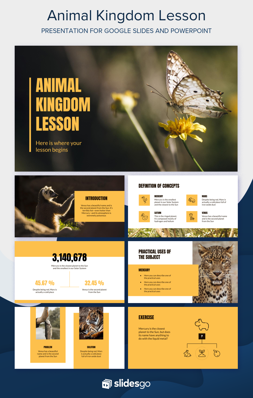 Animal Kingdom Lesson Presentation Free Google Slides