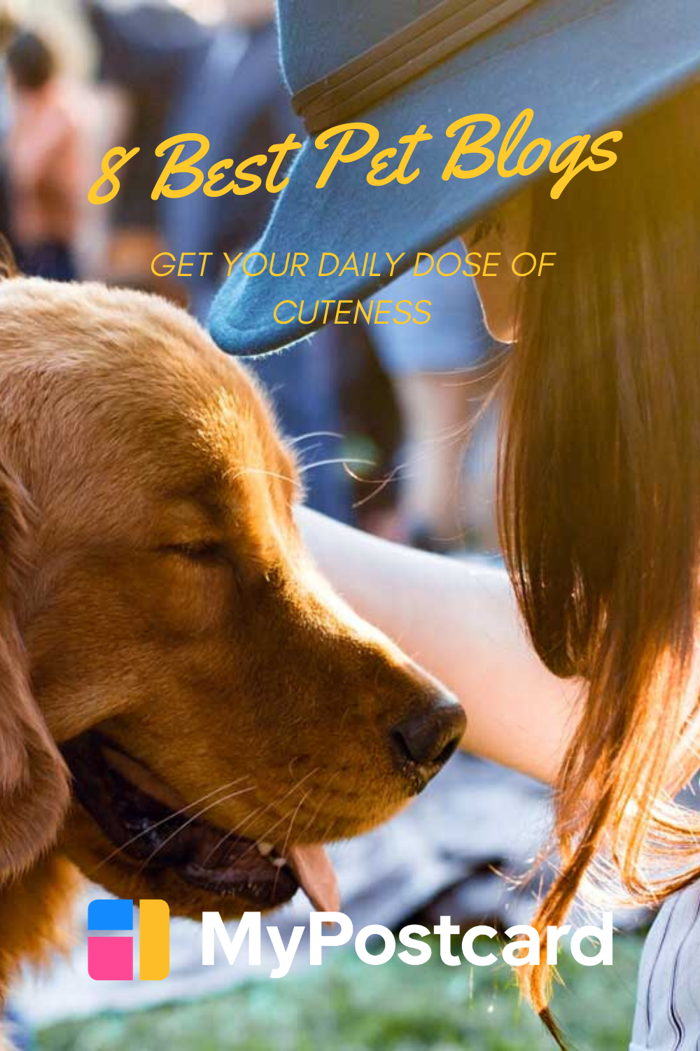 The Best Pet Blogs to Keep You Feeling Paws-itive - MyPostcard Blog in 2020    Cute dog quotes, Pet blog, Dog blog