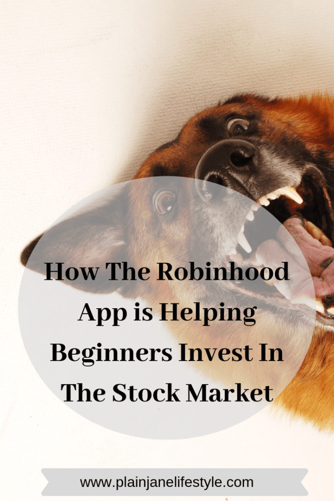 Buy Low, Sell High With The Robin Hood App Investing