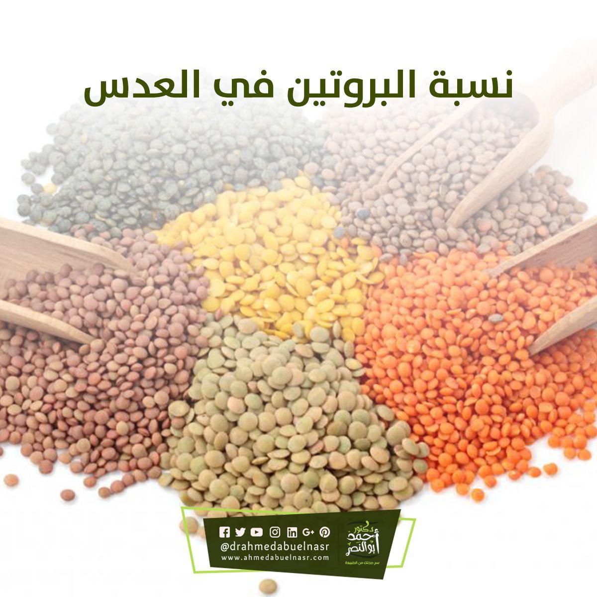 نسبة البروتين في العدس How To Dry Basil Herbs Basil