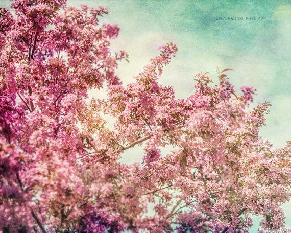Roze kinderkamer afdrukken of Canvas Art Teal door LisaRussoFineArt