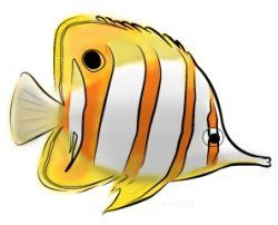 Exotic And Delightful Freshwater Marine Fishes Can Be Found In This Collection Of Tropical Fish Coloring Page These Aquatic Creatures Usually