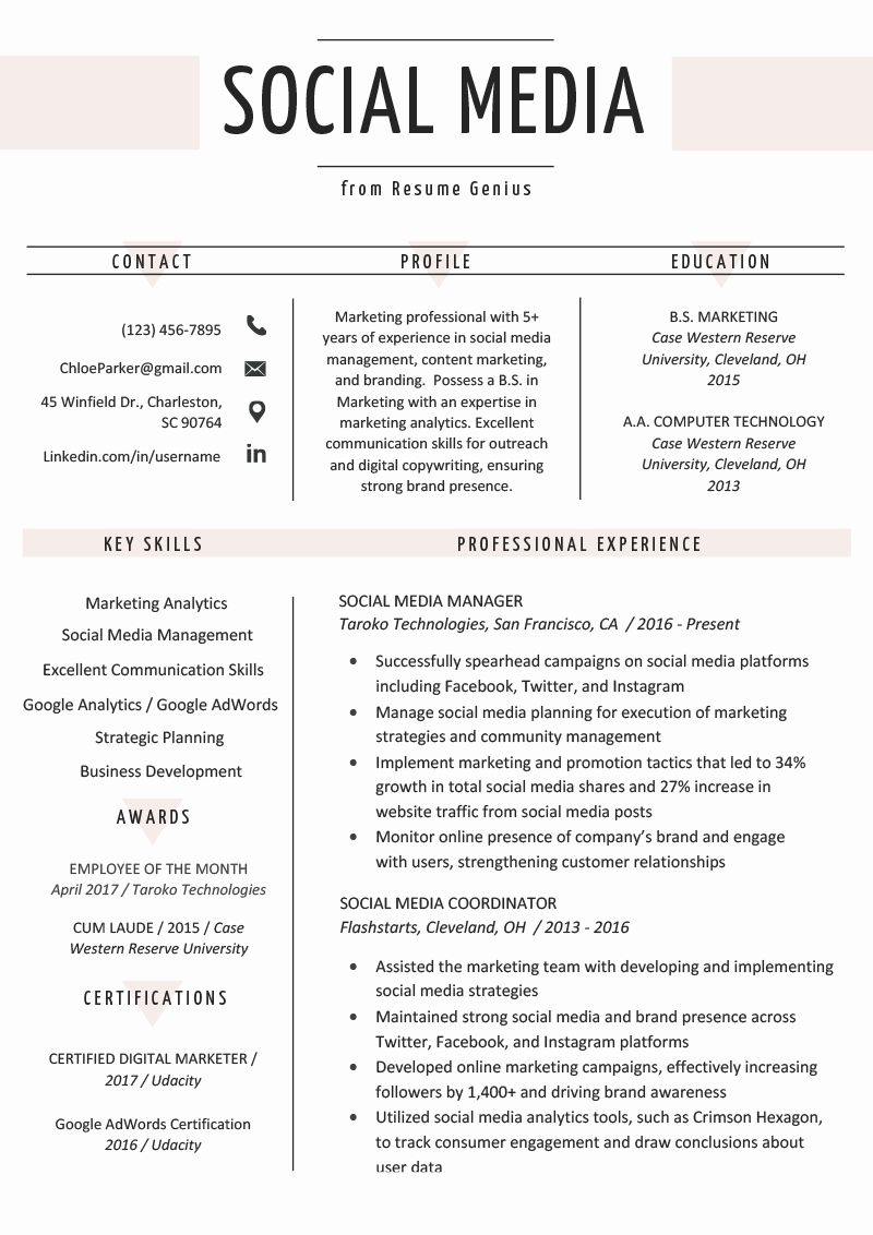 Digital Marketing Manager Resume Luxury Social Media Resume Example Writing Tips Marketing Resume Digital Marketing Manager Resume Examples