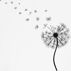 Bildergebnis für malvorlage pusteblume Dandelion tattoo