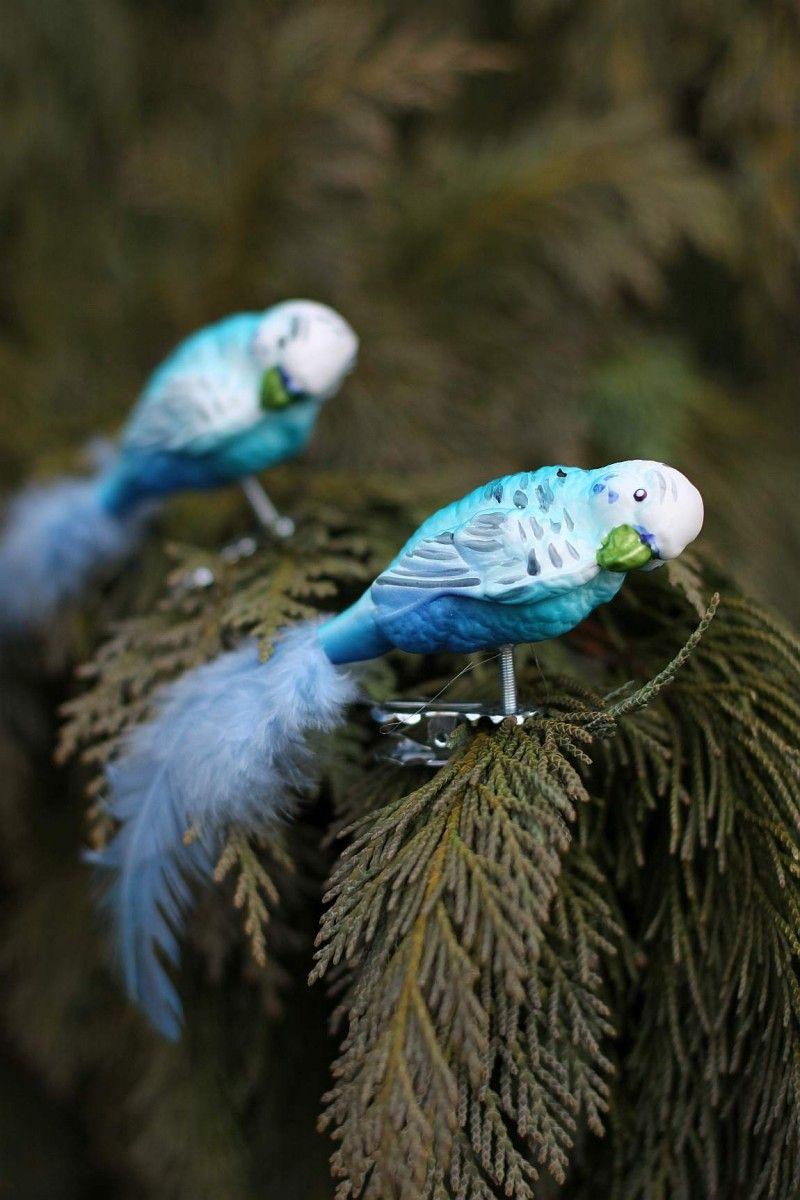 Clip Vogel Papagei Wellensittich Christbaumschmuck mit Federn blau ...