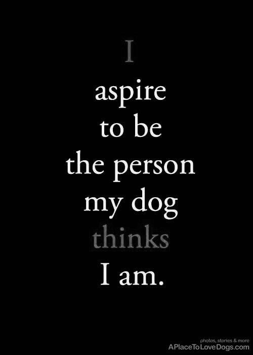Quotes About A Girl And Her Dog Pinholly Foote On For Now  Pinterest  Dog Pointers And Fur Babies