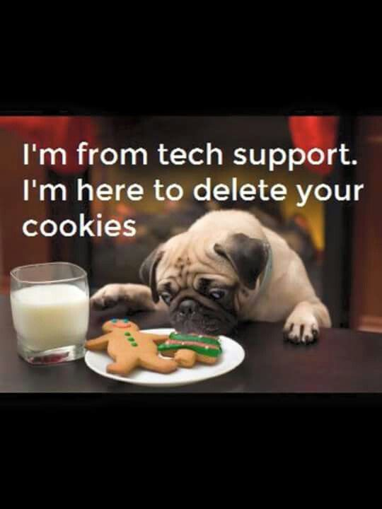 Tech The Dog Eating Your Cookies Funny Animal Pictures Pugs