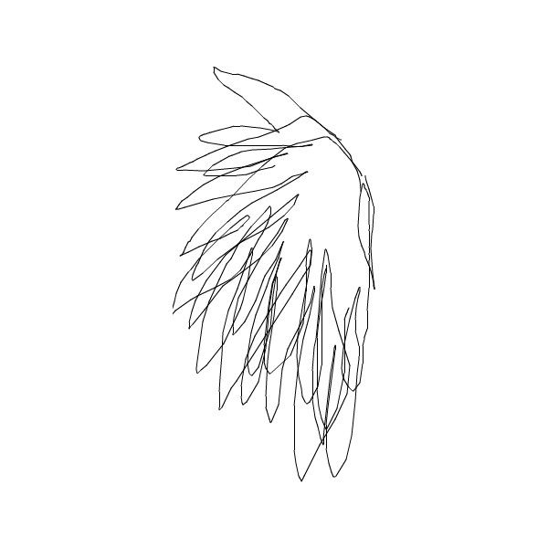 Sans Titre Png Liked On Polyvore Featuring Scribbles Wings Doodle Backgrounds And Drawing Art Sets Art Drawings