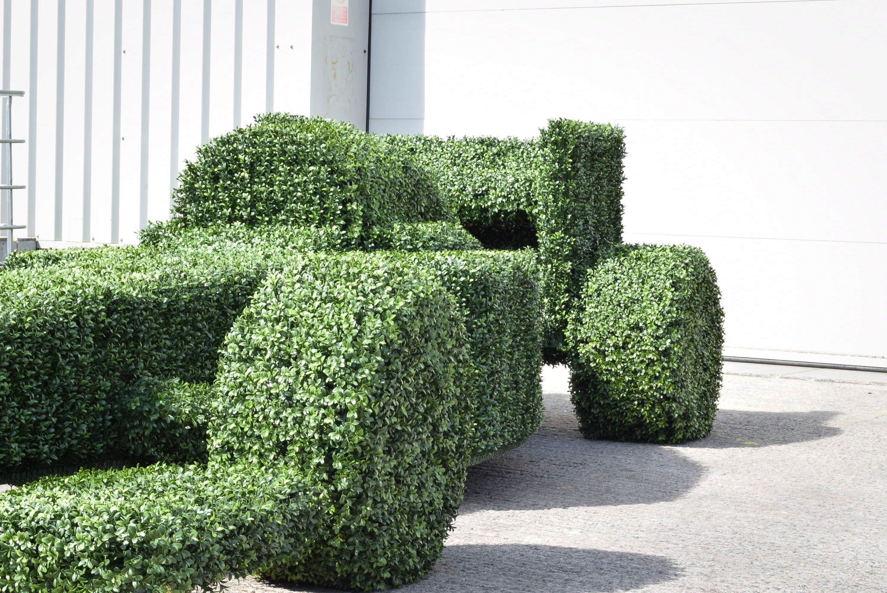 Perfect Formula 1 Car, Artificial Buxus Topiary Car, Designed And Made For The Abu  Dhabi