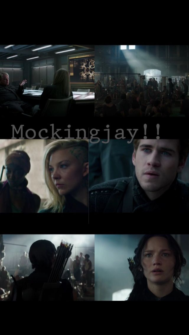 Mockingjay!! I'm going to cry soo much!