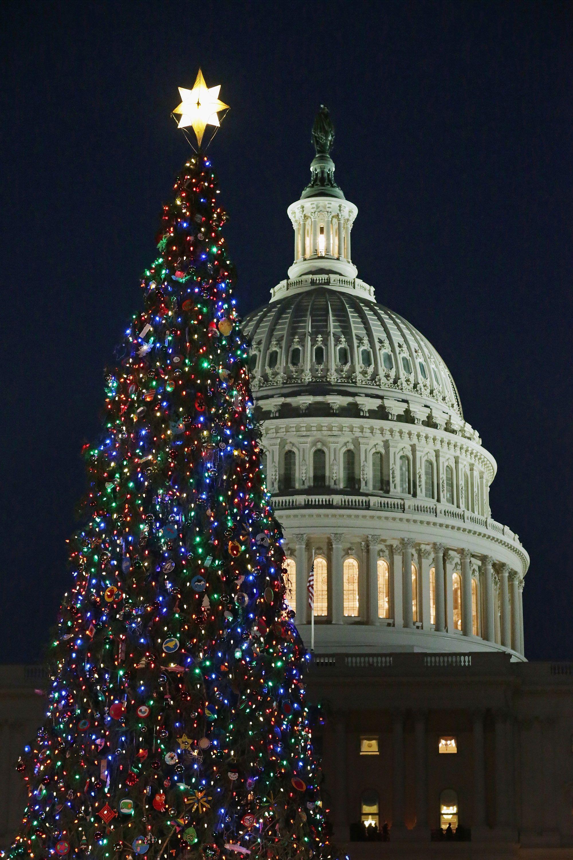 Parade Christmas Tree Christmas Wonderland Christmas Tree Lighting