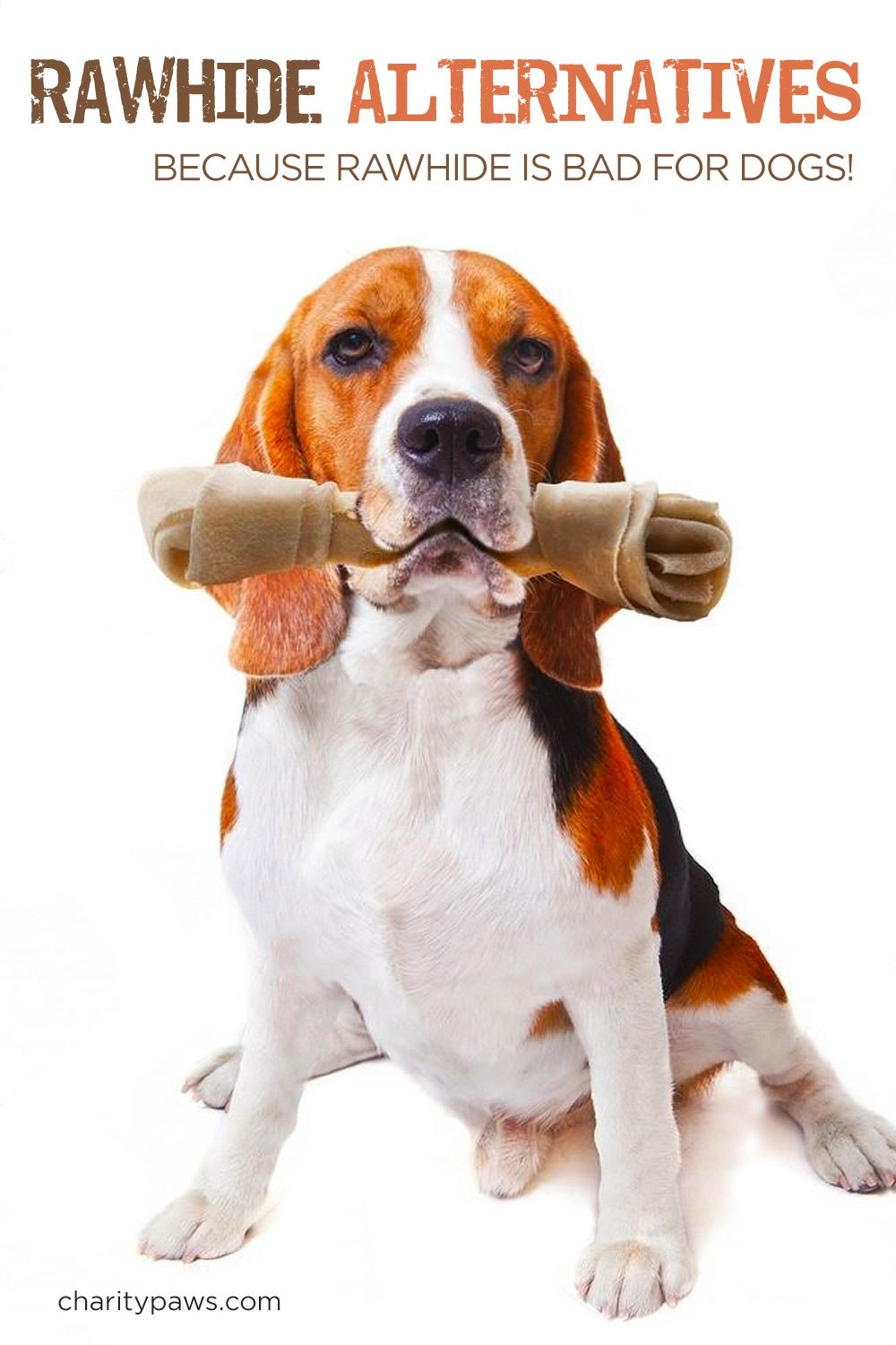 Rawhide Alternatives For Power Chewers Dog Gifts Dog Antlers Dogs