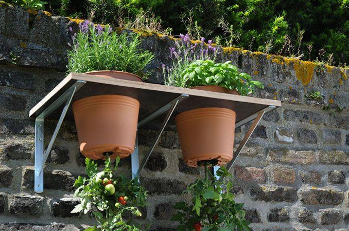 Anleitung Tomaten Pflanzen Leicht Gemacht Tomaten Pflanzen Tomaten Garten Pflanzen
